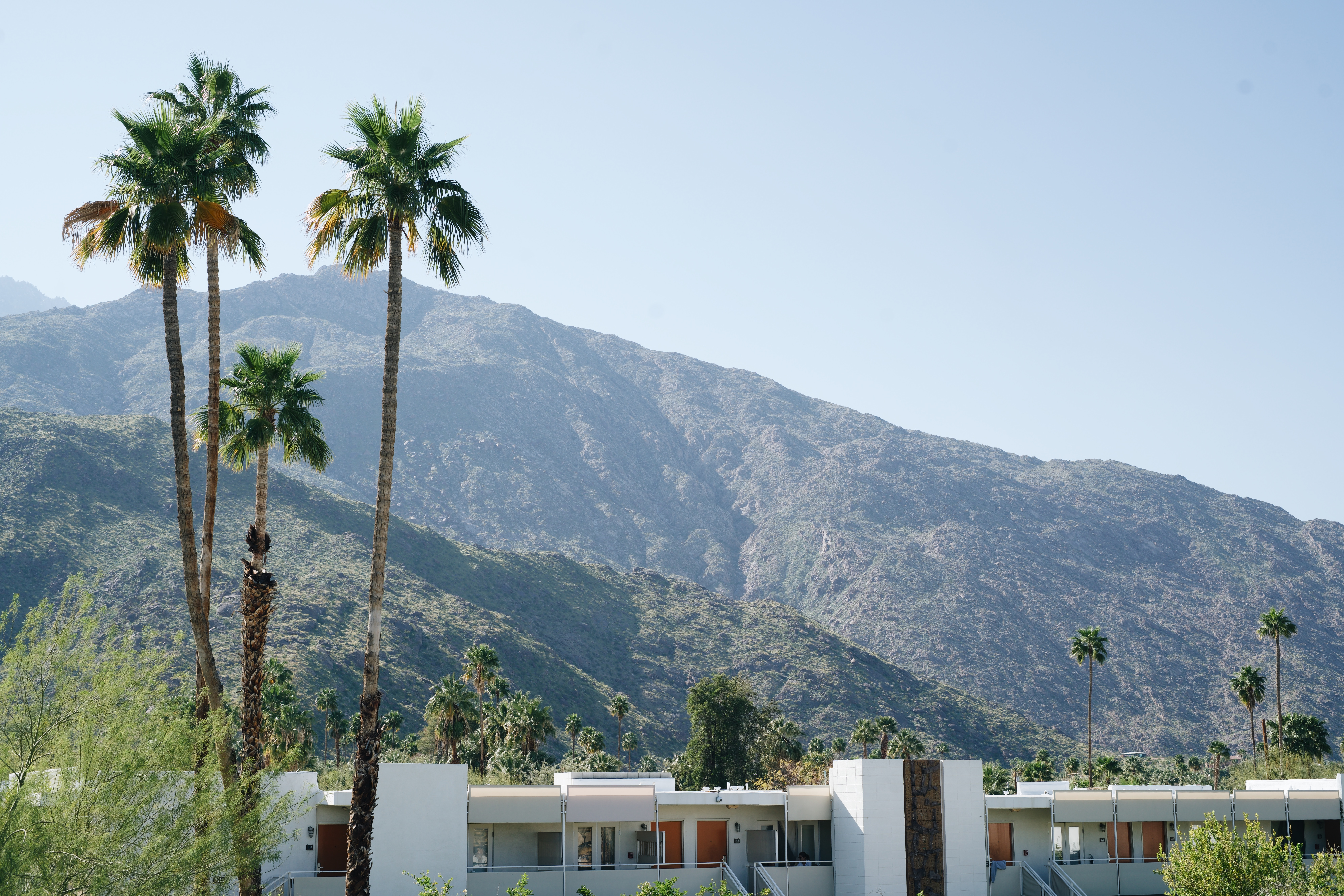 Palm Springs City Officials Announce Upcoming Cannabis Ordinance Revision