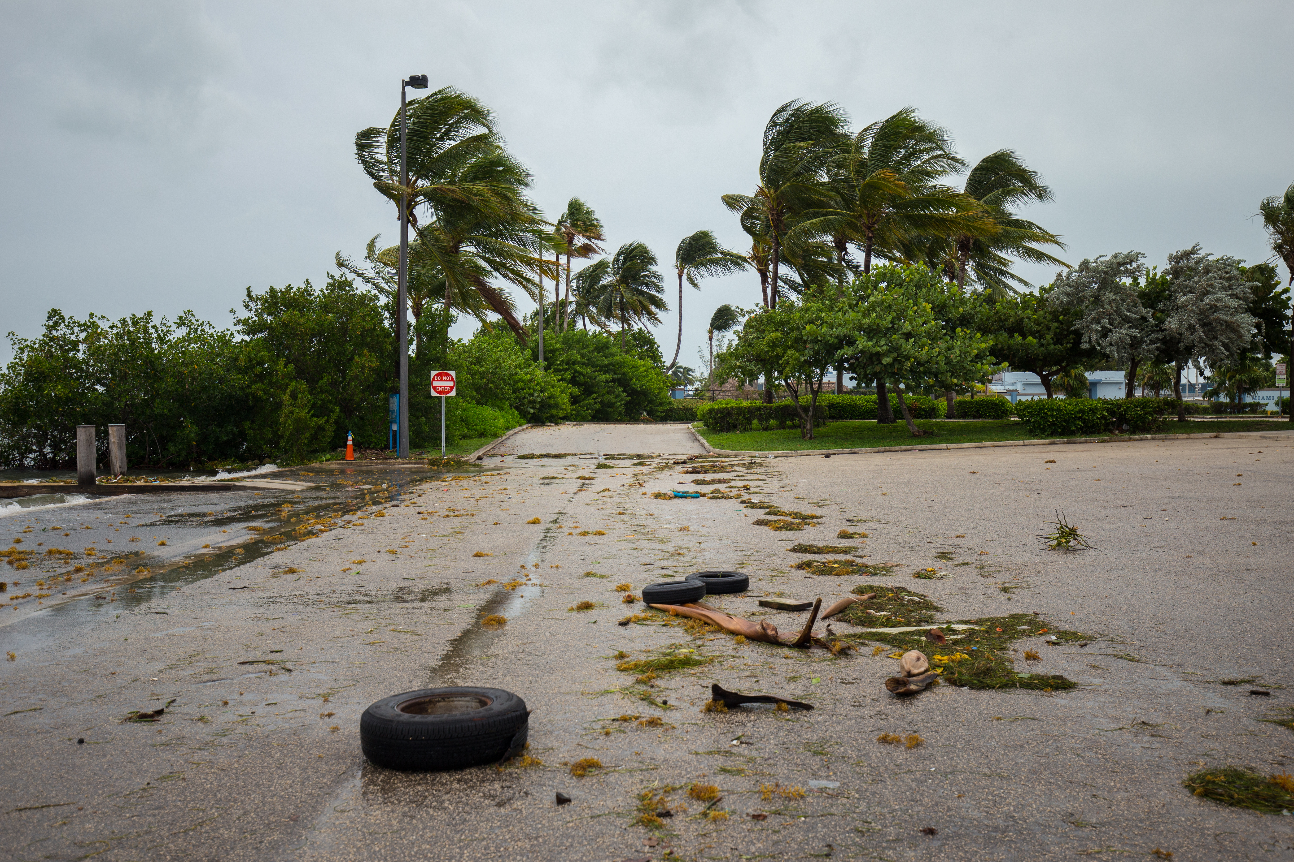 Canadian cannabis firm pledges 10% of revenues to Hurricane Irma victims