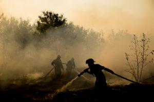 ABX/CannaCraft of Santa Rosa donate$50k to wildfire victims