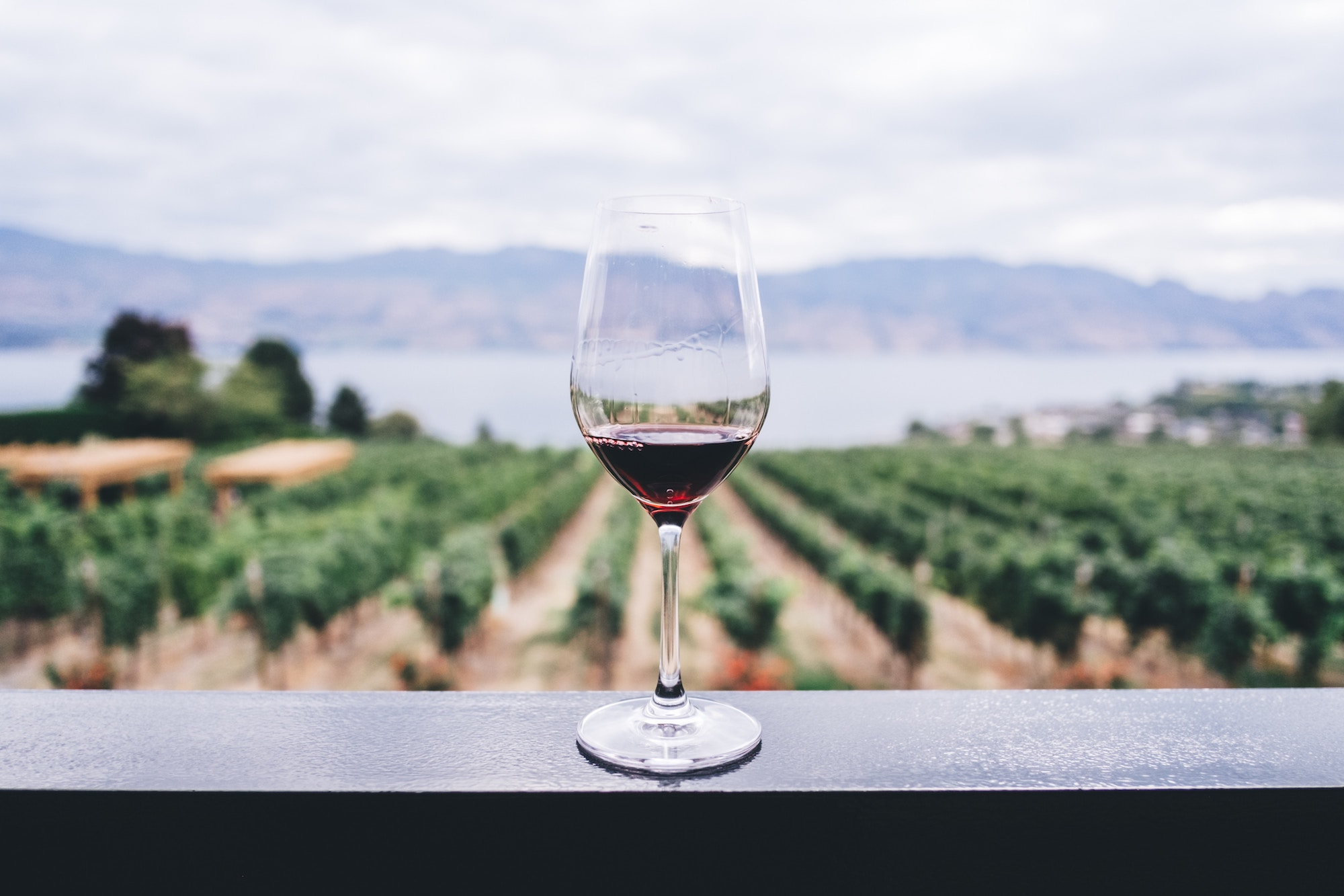 No more hangovers. Rebel Coast Winery launches world's first cannabis-infused, alcohol-removed wine