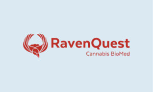 Raven Quest e1544579691746