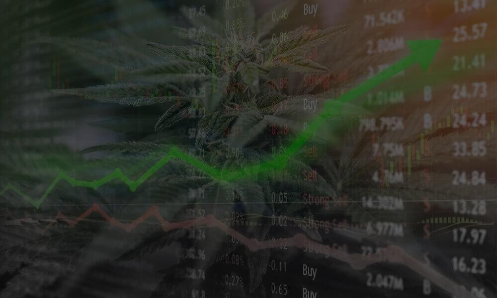 Choom, Emerging Cannabis Retailer, Goes Medical