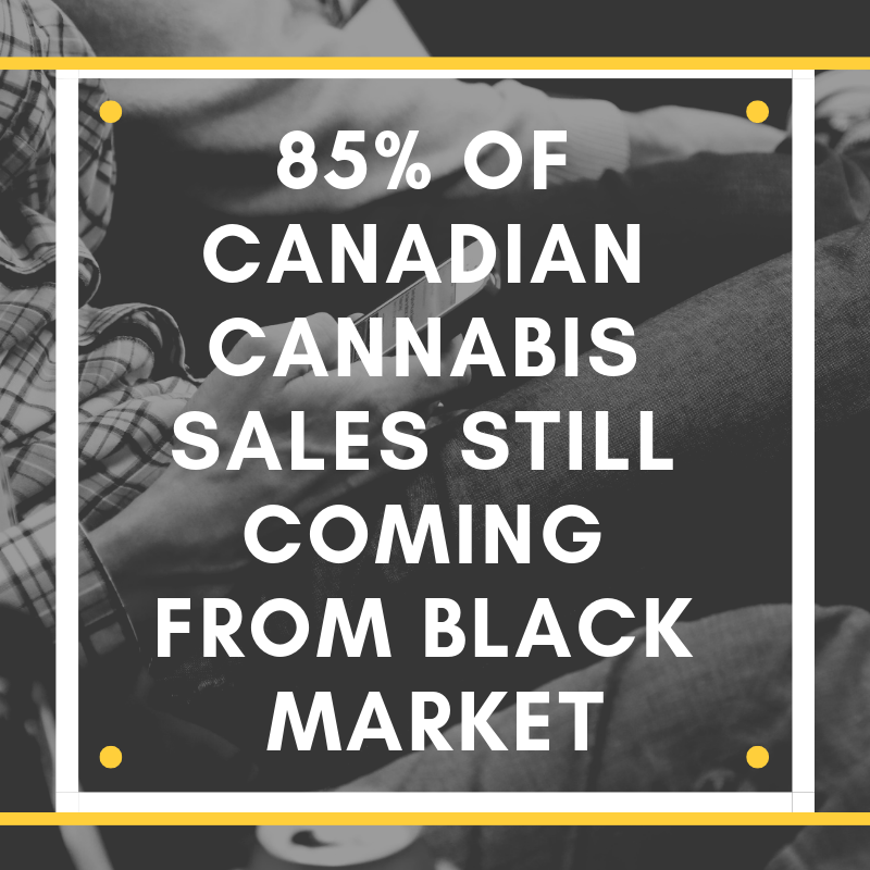 85% of Canadian Cannabis Sales Still Coming from Black Market