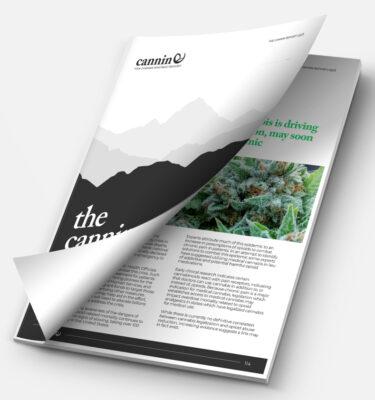 The Cannin Report Q2 2019 - The Hemp Edition