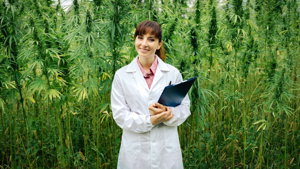 Cannabis Penny Stock News Release: Company Launches Proprietary Line of Medical Grade CBD Products