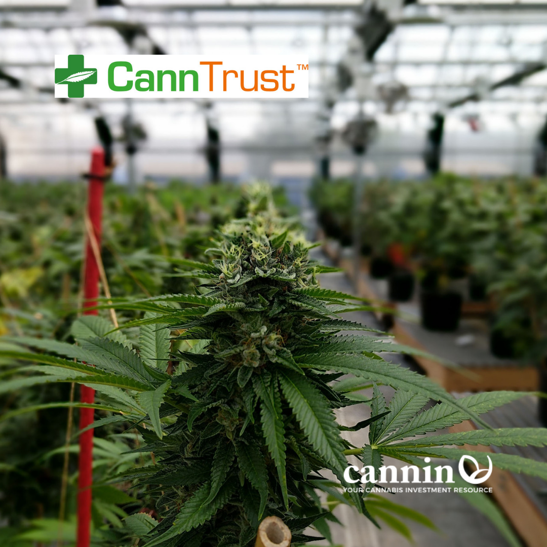 Hot Cannabis Stock CannTrust, Up 100% in 3 Months, Announces Huge Production Upgrades