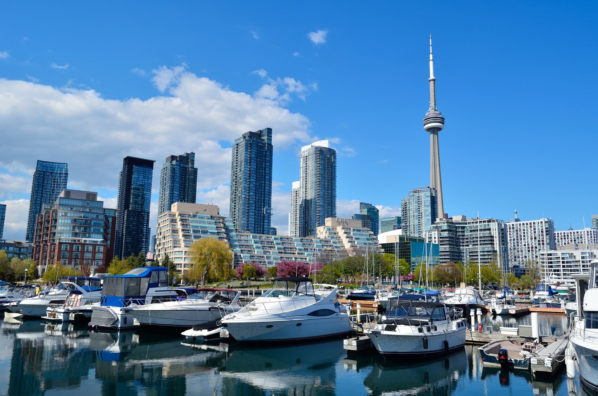 Canopy Rivers Toronto