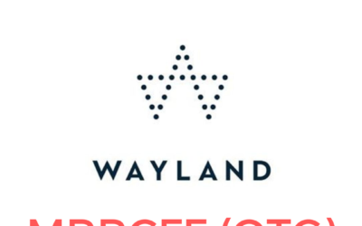 Wayland Group