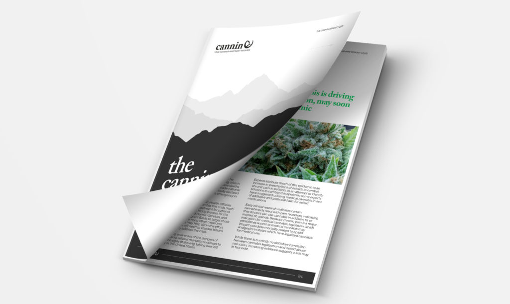 Which Marijuana Stocks Should You Buy in 2020? Get Your Copy of The Cannin Report