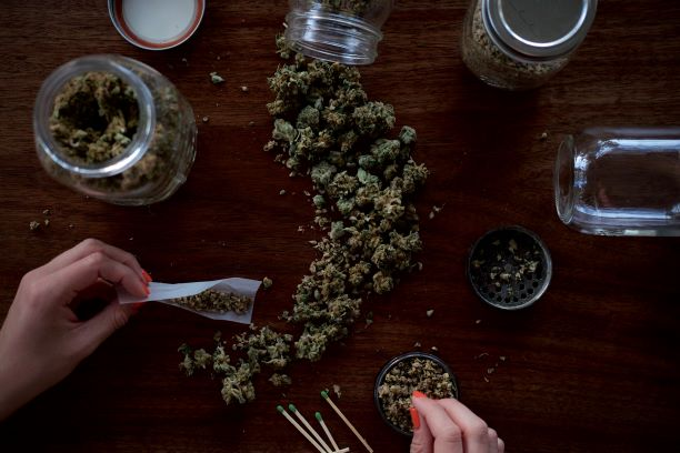 Study Reveals Cannabis Consumption up 38% YoY in the US