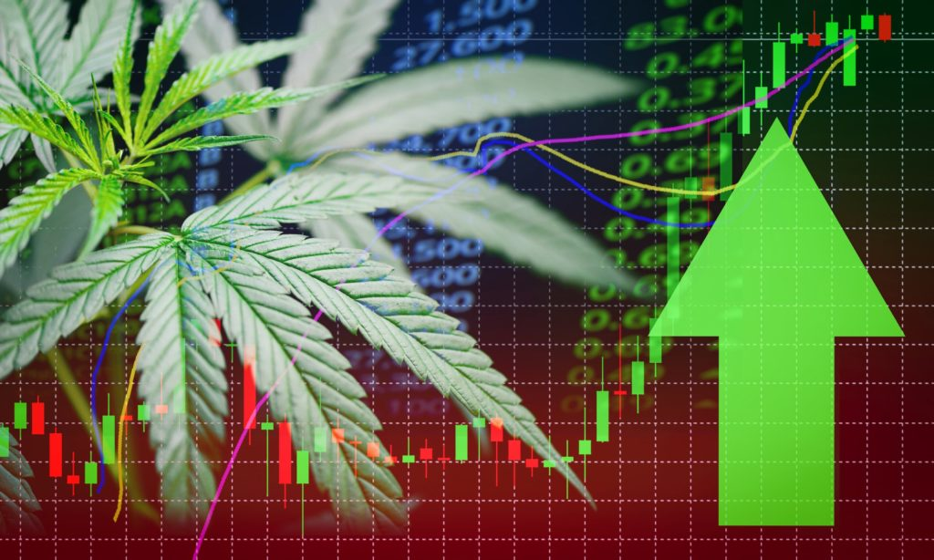 Hemp Inc. Eyes Expansion
