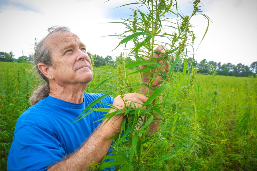 Best Hemp Stock to Watch 2020: Hemp, Inc.