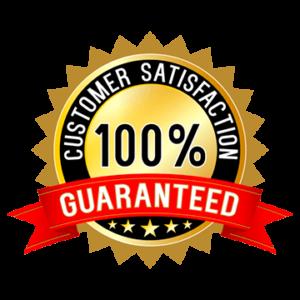 satisfaction guaranteed 2 large