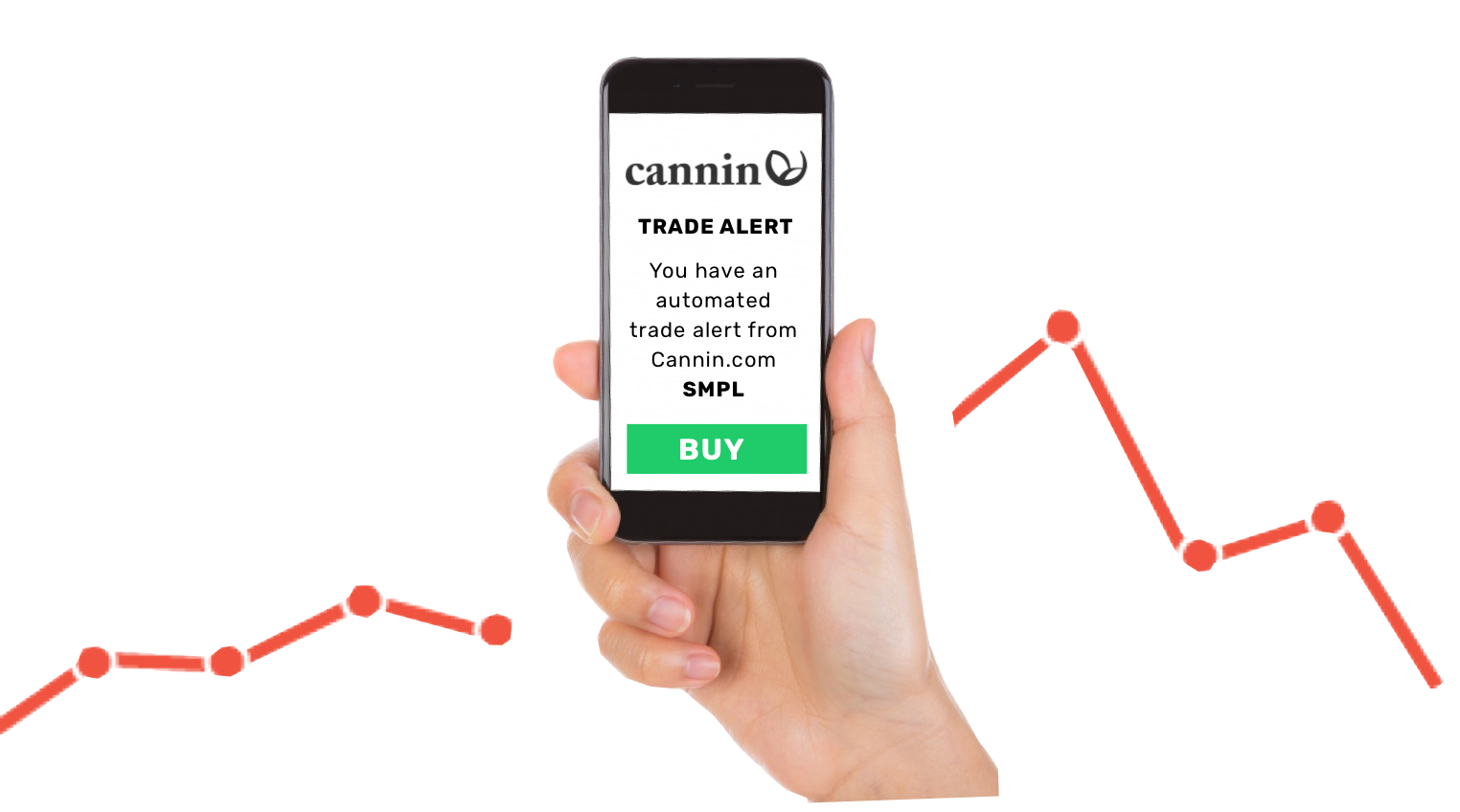 About Cannin: Your Hemp Stocks Resource