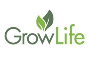 GrowLife: Can this Hemp Stock Bounce back in 2020?