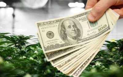 IIPR: Is this Marijuana Stock Still a Strong Buy?