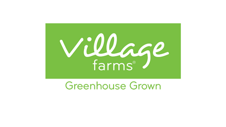 Village Farms: Is this Cannabis Stock a Strong Buy?