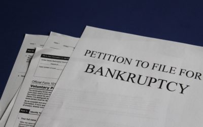Penny Hemp Stock Pharmagreen Biotech Files for Bankruptcy