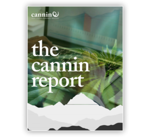Cannin Investment Group: Your Hemp Stocks Resource