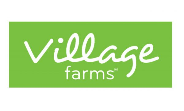 Hemp Stocks: Is Village Farms International Stock a Buy?