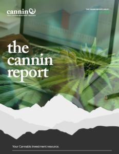 Best Hemp Stocks 2020 - Cannin Report