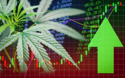 CV Sciences: This Hemp Stock Will Surge Once There is Regulatory Clarity on CBD