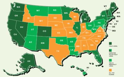 What Cannabis & Hemp Stocks Benefit From Recent Legalization?