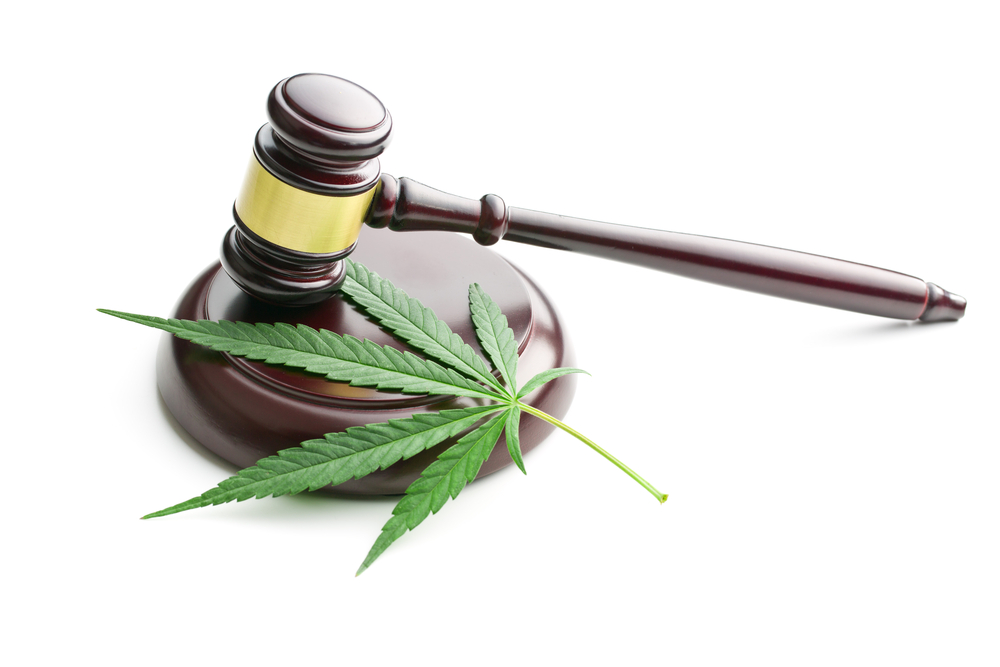 Charlotte's Web: Is this Hemp Stock a Strong Buy Now?
