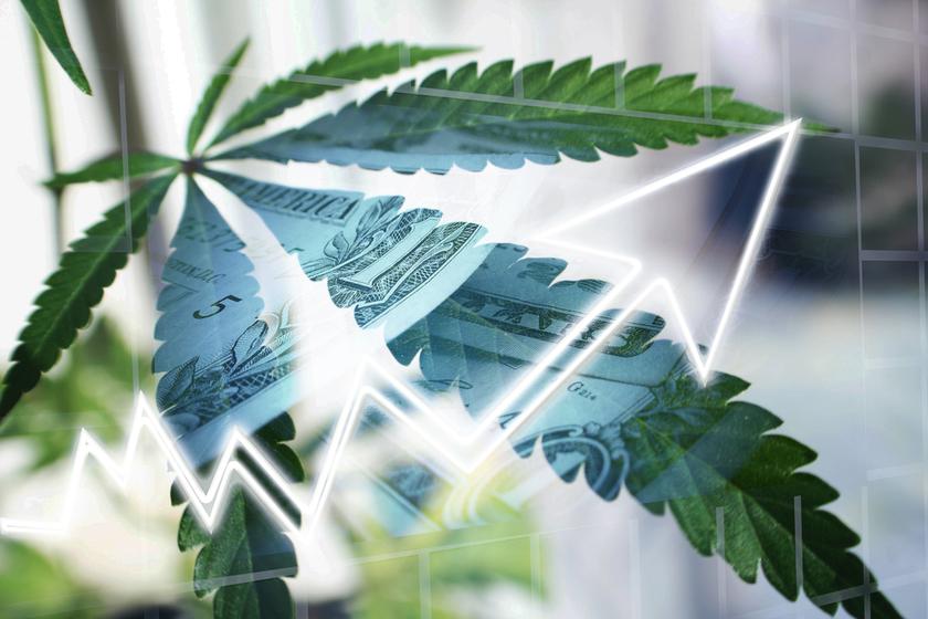 What are cannabis ETFs?