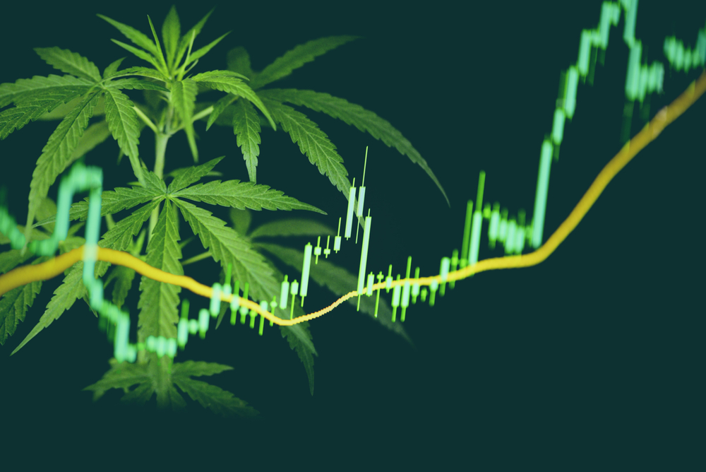 Cannabis ETF Index