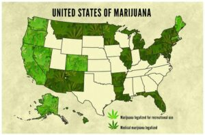 The Impact of Federal Legalization on the Cannabis Industry