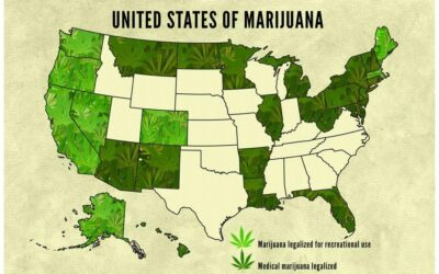 Don't Bet On The Government To Legalize Weed