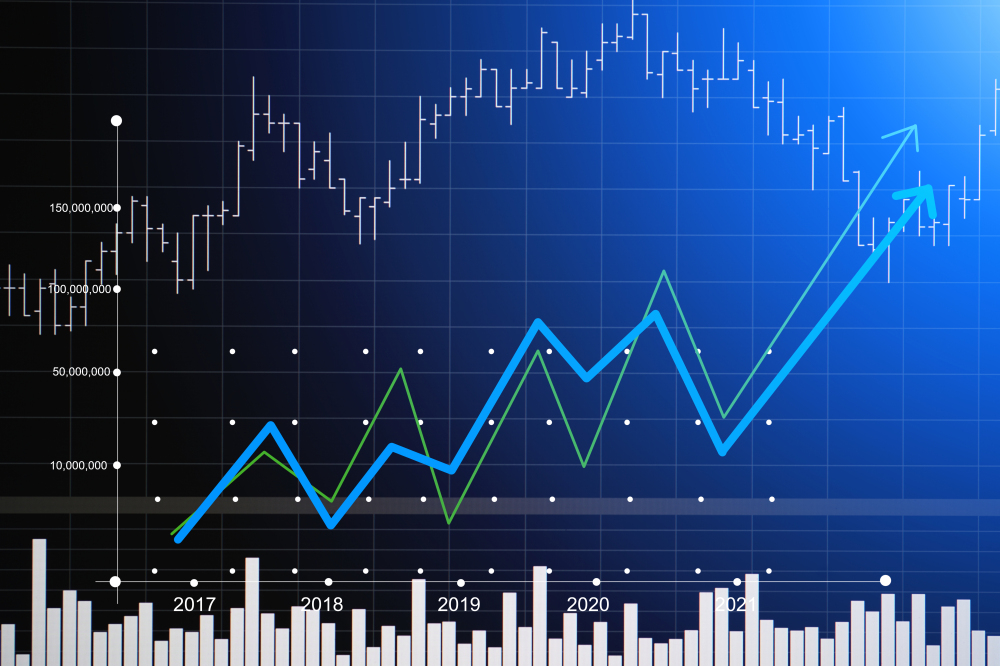 Bottom Line: Should You Buy this Hemp Stock Right Now?