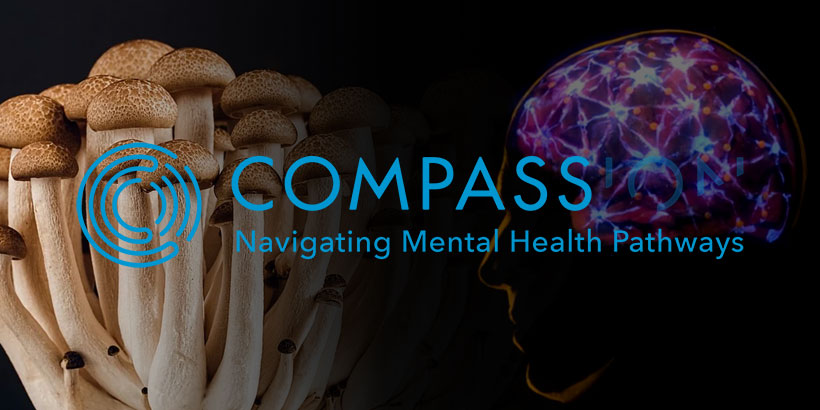 Compass Pathways Top 5 Psychedelic Stocks 2021