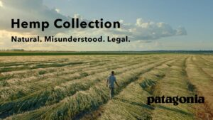 How is Patagonia is Creating a Domestic Supply Chain for Hemp Fiber?