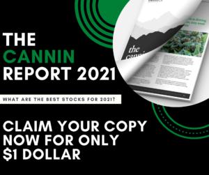 Best Hemp Stocks 2021 - Cannin Report