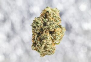 Minnesota House Votes to Legalize Recreational Cannabis Use