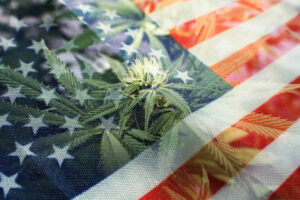 4th of July weekend expected to bring in $206,000,000 in national retail cannabis sales