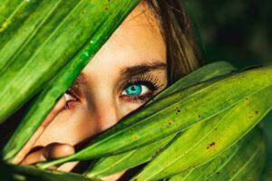 Clinical Study Validates Innocan Pharma's CBD Eye Serum