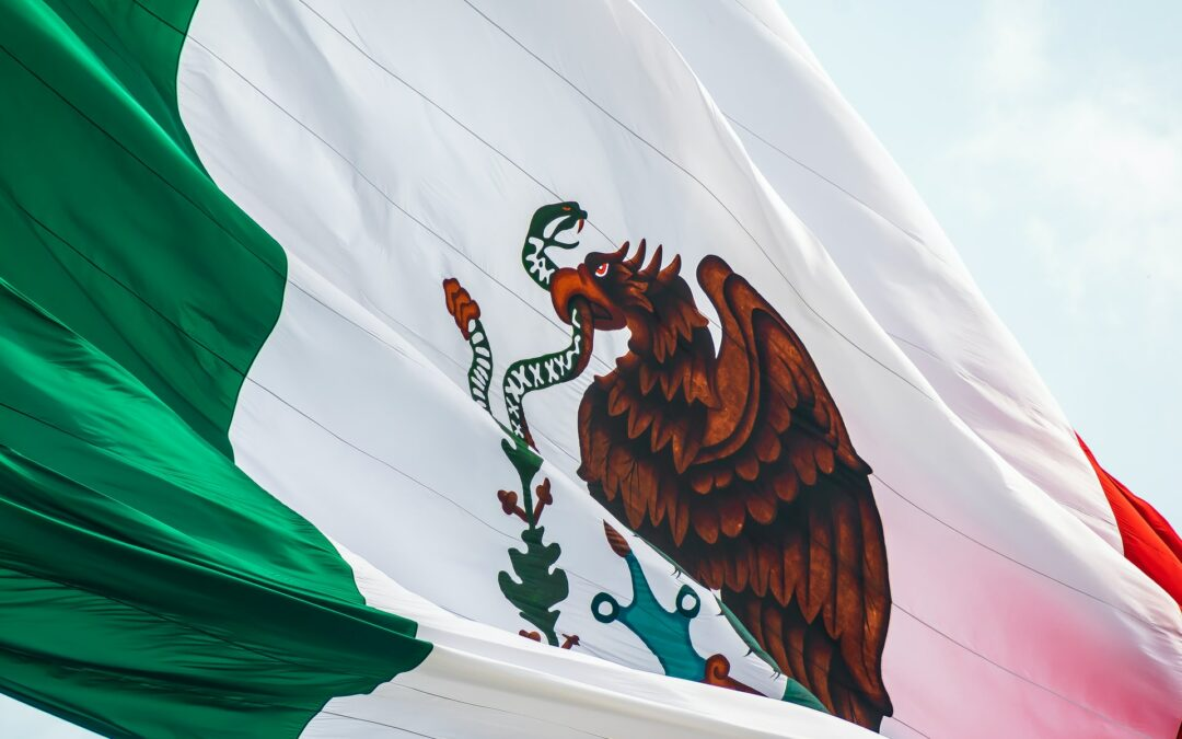Vicente Fox Applauds Mexican Supreme Court's Advancement of Cannabis Laws