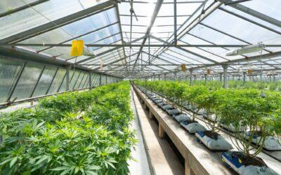 GrowGeneration Acquires Mendocino Greenhouse