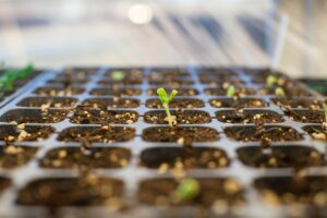 Greenlane Holdings Announces $32 Million Registered Direct Offering